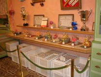 Une autre vue de l'intérieur du magasin